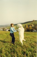 Untitled (Dancing with Goat)